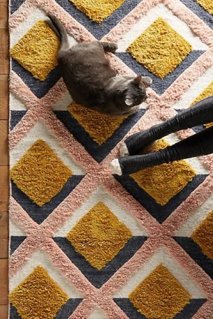 anthro-rug-color-palate